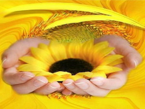 slunce v dlaních velké