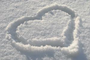 srdce v zimě